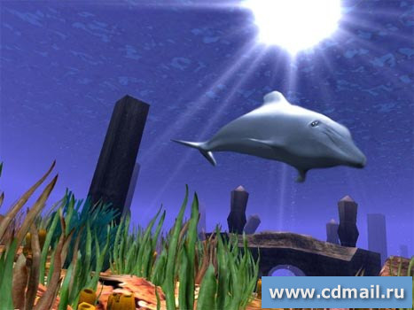 Скриншот 3D Wild Dolphin Screensaver