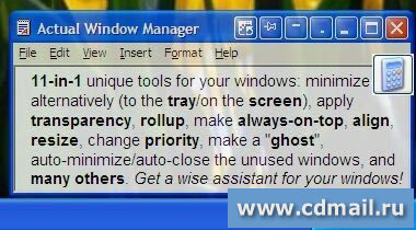 Скриншот Actual Window Manager