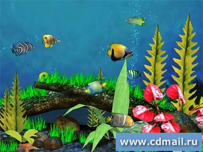 Скриншот Fish Aquarium 3D Screensaver