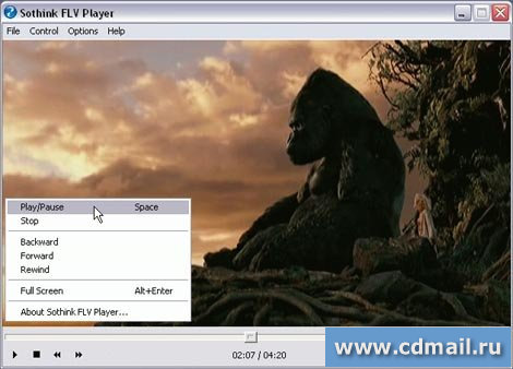 Скрин Sothink FLV Player